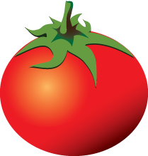 Follow Us Rotten Tomatoes